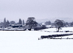 A view from Church Lane in Woodford Cheshire taken by Evelyn Frearson - January 2010