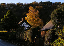 Thatched cottage on The Hough taken by Evelyn Frearson