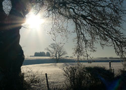 A photo of morning sun in the snow at Hilltop in Woodford Cheshire taken by Kris Hayward