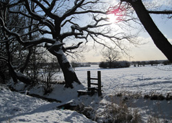 A view of Woodford, Cheshire in the snow taken by Helen Buszard
