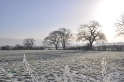 Woodford Community Council Winter Sun Photo Competition Entry